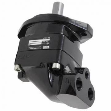 PARKER Hydraulique Double pompe à engrenages - 3339521057 s'adapte à M-Trak Perforateur