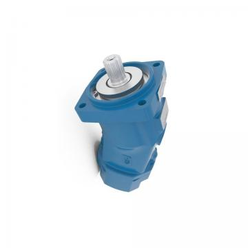 Nessie Danfoss PAH 2,0 Hi Pressure Tap Water Pump, Technical Water Axial Piston