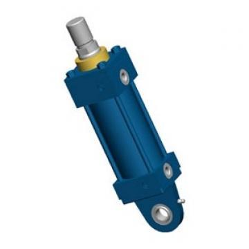 Vérin hydraulique de hayon coffre pour Renault Kangoo & Kubistar