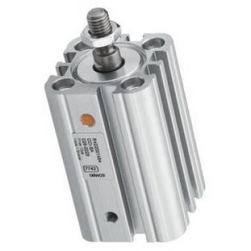 Bosch Rexroth 0822063004 Pneumatic Guided Cylinder New