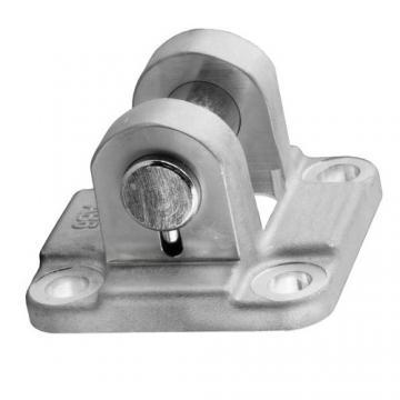 Bosch Aventics Rexroth R432023125 Pneumatic Cylinder Task Master 200 PSI New
