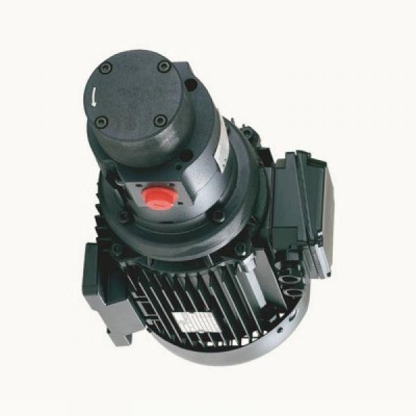 Neuf YALE / PARKER 580070879 Pompe Hydraulique 7049521004 1625615 #3 image