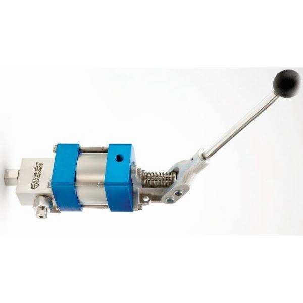 Genuine PARKER/JCB LOADALL Twin pompe hydraulique 20/925592 MADE in EU #1 image