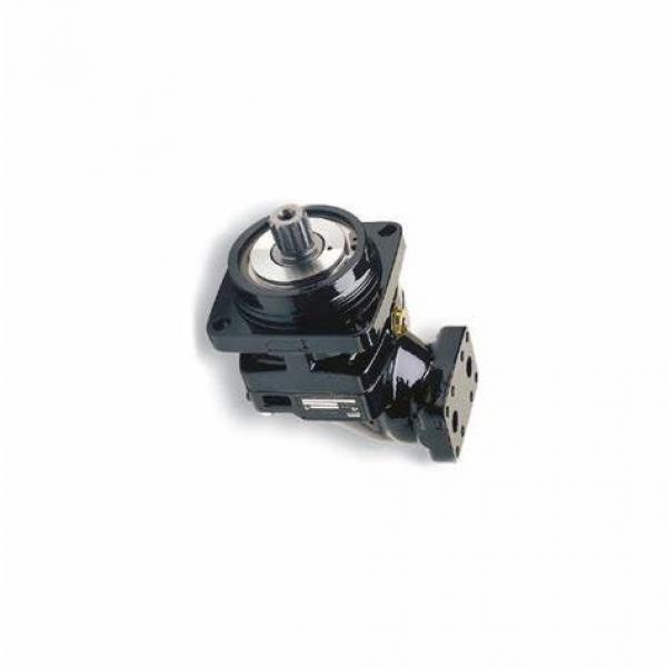 Neuf YALE / PARKER 580070879 Pompe Hydraulique 7049521004 1625615 #1 image