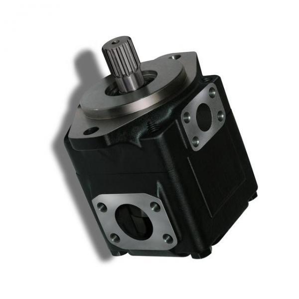 Genuine PARKER/JCB LOADALL Twin pompe hydraulique 20/925592 MADE in EU #3 image