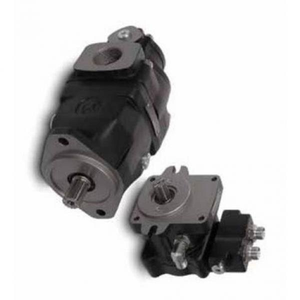BOSCH REXROTH hydraulic axial piston fixed pump A17FO032/10NLWK0E81-0 R902162390 #1 image