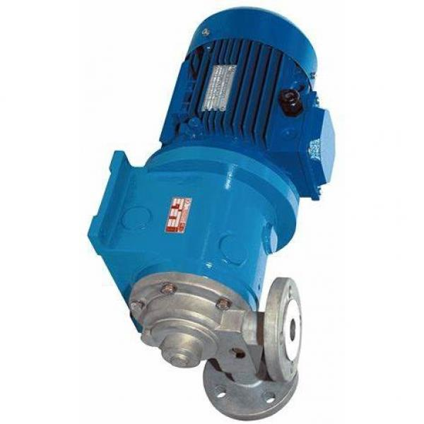 Pompe hydraulique pompe engrenages externe gear pump standard europeen groupe 3 #1 image
