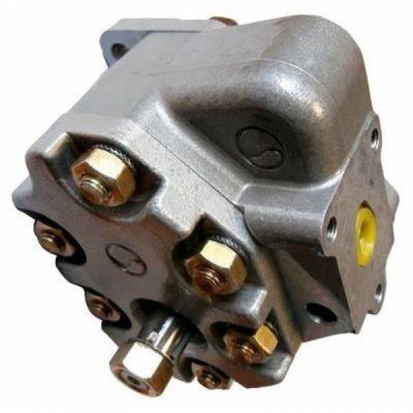 Yanmar Excavator Hydraulic Pump Fits ViO-50 172176-73250 #1 image