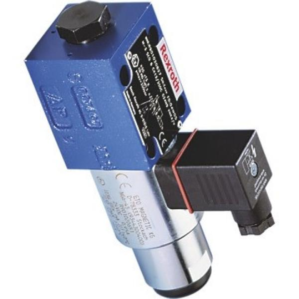 REXROTH BOSCH MNR R480066123 vérin pneumatique SANS TIGE  air drive RODLESS #3 image