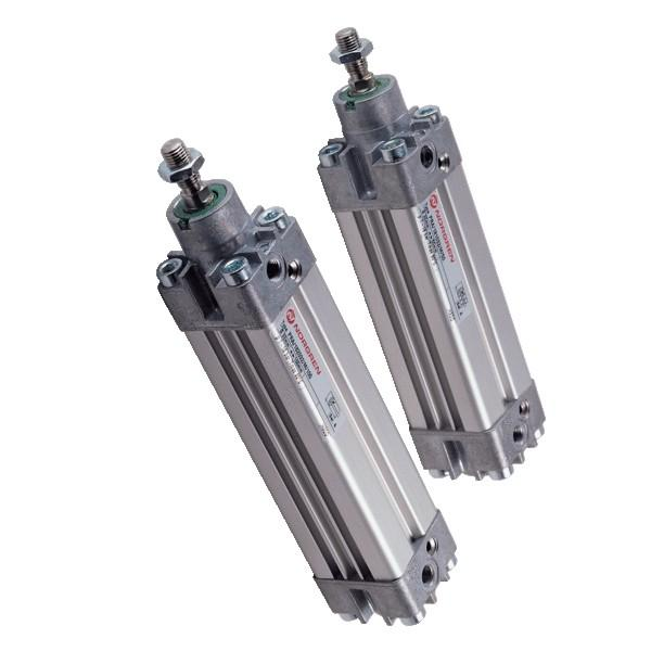 Bosch 0-822-243-003 Pneumatic Cylinder 0822243003 #2 image