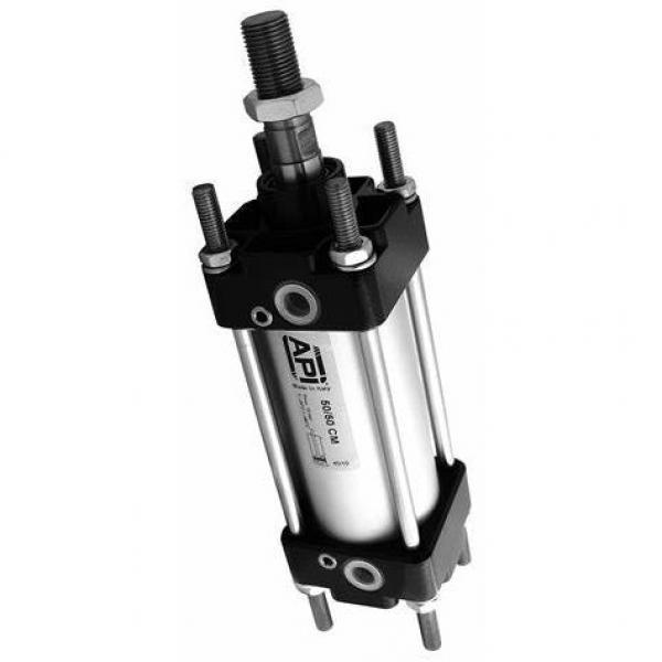 Plombier - Vérin Double Effet 40/25 1000 mm Hub #3 image