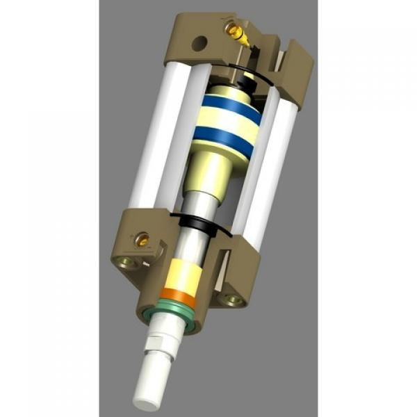 Plombier - Vérin Double Effet 40/25 1000 mm Hub #1 image